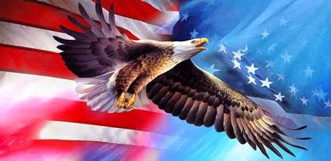 american eagle flag 1