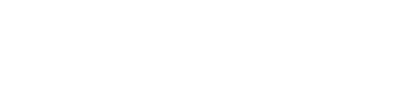 fly right logo white